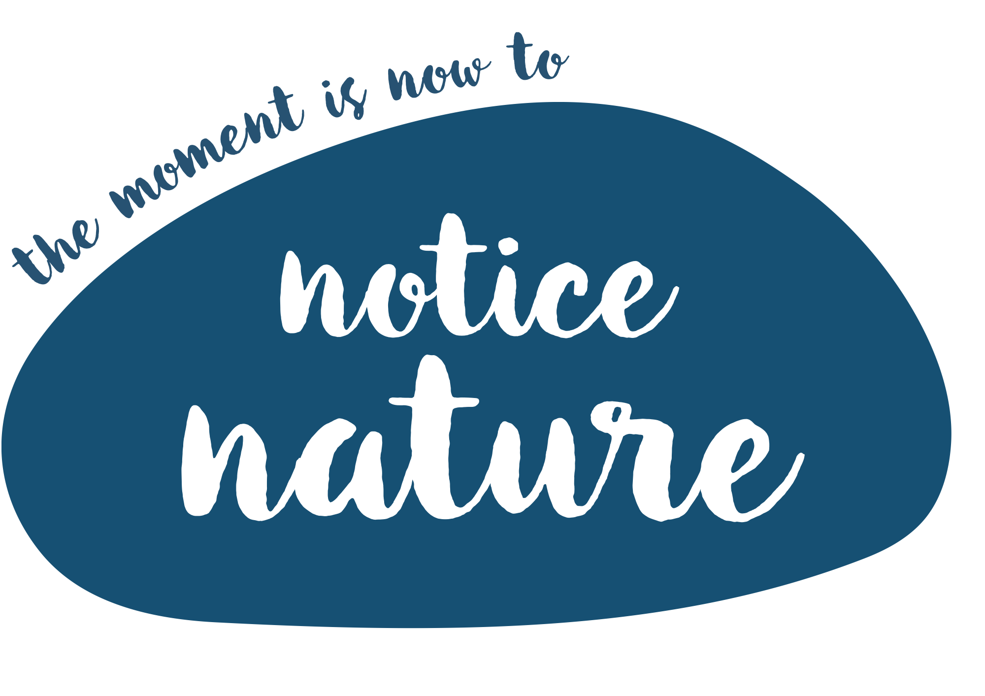 How to Notice Nature